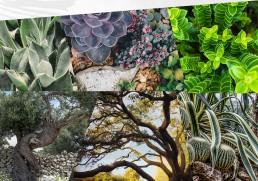 The Garden Studio mood collage