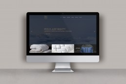 Website design for SilkFX